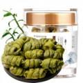 Dendrobium / Maple Bucket